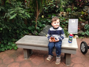 Having snacks with the butterflies....